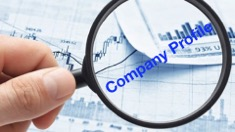 Free Company Profile of Vista Group